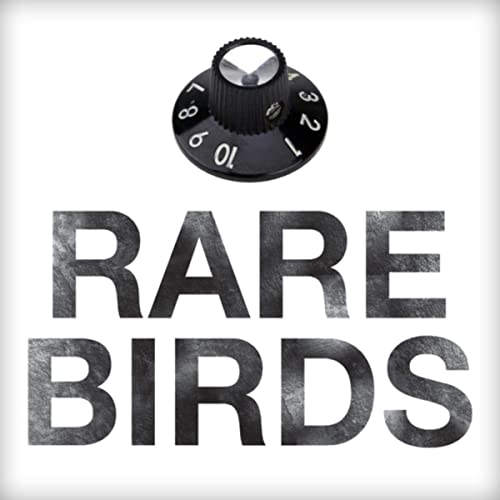 Rare Birds Self Titled Debut EP. Music Comfort Food!